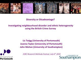 Diversity or Disadvantage   Investigating neighbourhood disorder and ethnic heterogeneity using the British Crime Survey