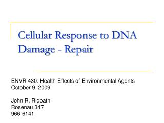 Cellular Response to DNA Damage - Repair