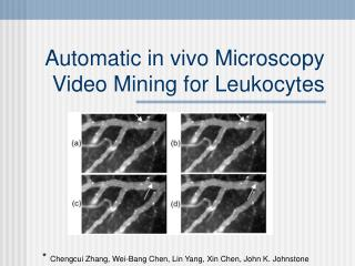 Automatic in vivo Microscopy Video Mining for Leukocytes