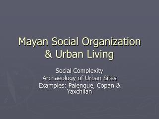 Mayan Social Organization & Urban Living