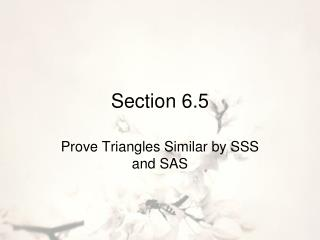 Section 6.5