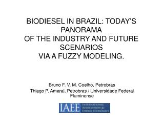 BIODIESEL IN BRAZIL: TODAY S PANORAMA OF THE INDUSTRY AND FUTURE SCENARIOS VIA A FUZZY MODELING.