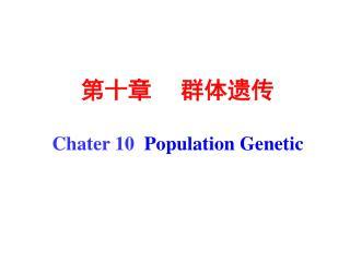 第十章     群体遗传 Chater 10   Population Genetic