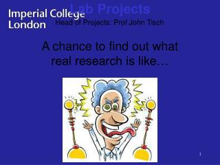 A chance to find out what real research is like…