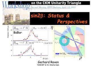 sin2 b :  Status &             Perspectives