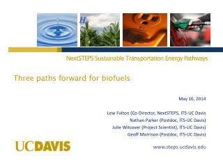 Three paths forward for biofuels