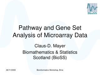 Pathway and Gene Set Analysis of Microarray Data