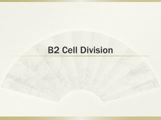 B2 Cell Division