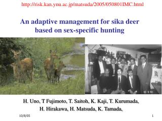 An adaptive management for sika deer based on sex-specific hunting
