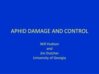 APHID DAMAGE AND CONTROL
