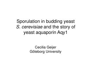 Sporulation in budding yeast  S. cerevisiae  and the story of yeast aquaporin Aqy1
