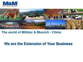 The world of Militzer & Muench - China