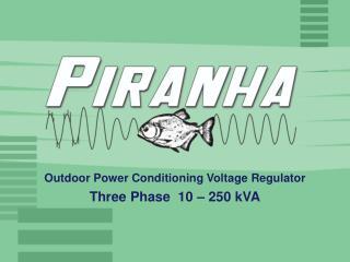 Outdoor Power Conditioning Voltage Regulator