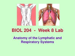 BIOL 204  -  Week 8 Lab