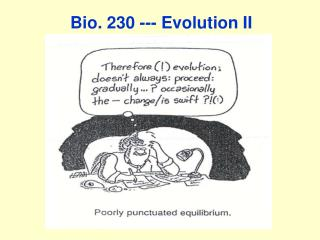 Bio. 230 --- Evolution II