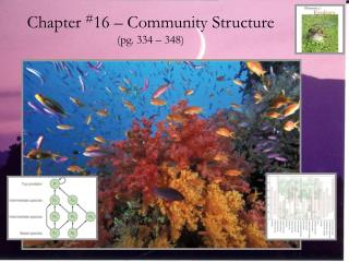 Chapter  # 16 – Community Structure (pg. 334 – 348)