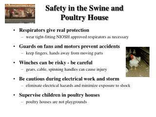 Safety in the Swine and Poultry House