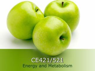 CE421/521