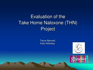 Evaluation of the  Take Home Naloxone THN Project