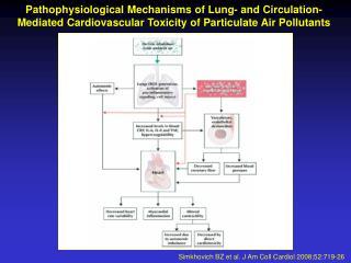 Simkhovich BZ et al. J Am Coll Cardiol 2008;52:719-26