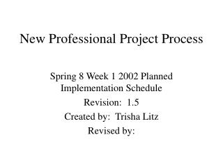 New Professional Project Process