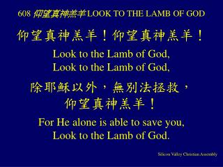 608  仰望真神羔羊  LOOK TO THE LAMB OF GOD