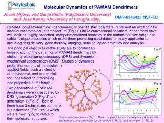 Dynamics of Nanostructured Systems  Jovan Mijovic, Polytechnic University, DMR-0346435 NSF-EC