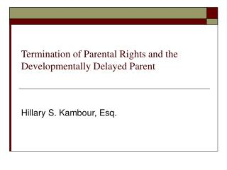Termination of Parental Rights and the Developmentally Delayed Parent