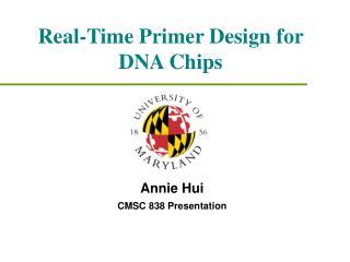Real-Time Primer Design for DNA Chips