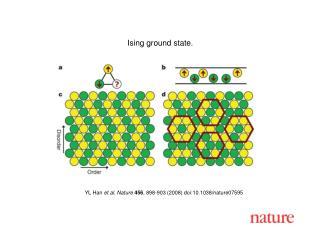 YL Han et al. Nature 456 , 898-903 (2008) doi:10.1038/nature07595