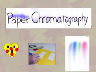 Paper Chromatography of a Spinach Leaf Lab