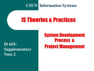 IS Theories & Practices