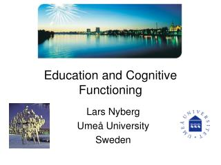 Education and Cognitive Functioning