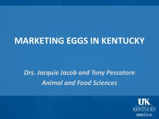 MARKETING EGGS IN KENTUCKY