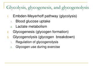 Glycolysis, glycogenesis, and glycogenolysis