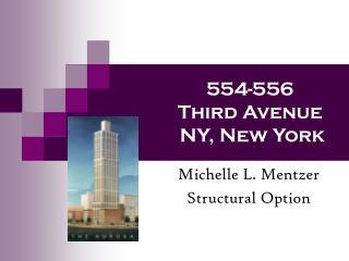 554-556  Third Avenue  NY, New York