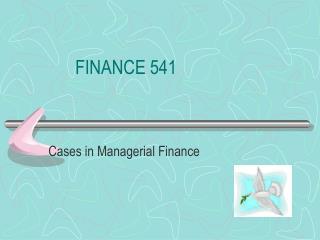 FINANCE 541