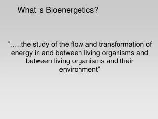 What is Bioenergetics?