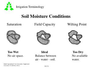 Soil Moisture Conditions