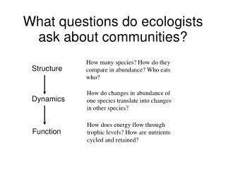 What questions do ecologists ask about communities?