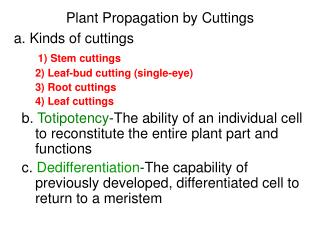Plant Propagation by Cuttings