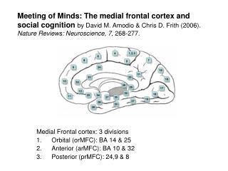 Medial Frontal cortex: 3 divisions Orbital (orMFC): BA 14 & 25 Anterior (arMFC): BA 10 & 32