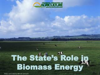 The State's Role in Biomass Energy