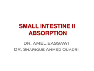 SMALL  INTESTINE II  ABSORPTION