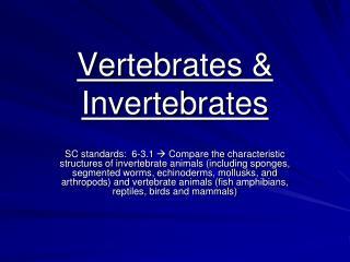 Vertebrates & Invertebrates