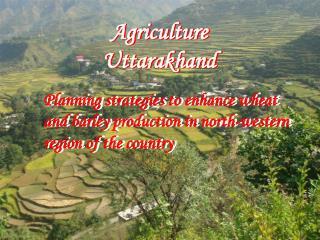 Agriculture  Uttarakhand