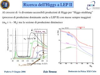 Ricerca dell'Higgs a LEP II