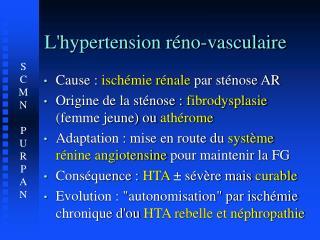 L'hypertension réno-vasculaire