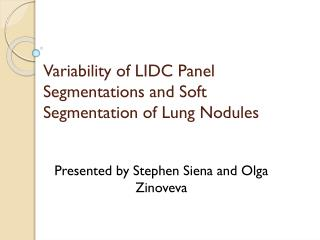 Variability of LIDC Panel Segmentations and Soft Segmentation of Lung Nodules