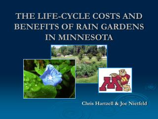 THE LIFE-CYCLE COSTS AND BENEFITS OF RAIN GARDENS IN MINNESOTA